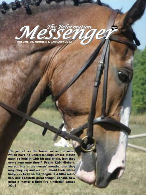 The Reformation Messenger - January 2013
